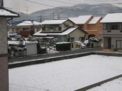 雪景色1 2008.1