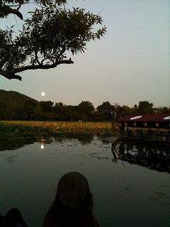 大沢の池 月