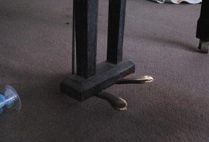 pedal.jpg