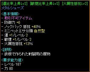 gv1_10.JPG