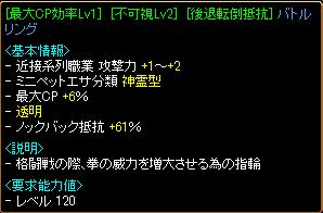 gv1_11.JPG