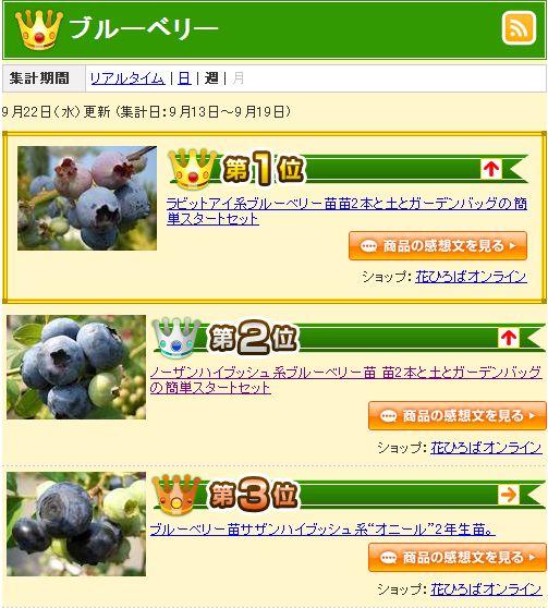 rankingu0925_1.JPG