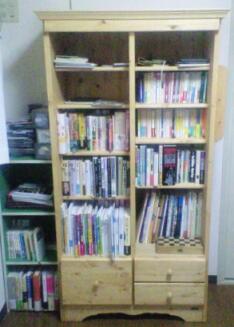 左の棚の下のピンクの本は谷岡ヤスジです
