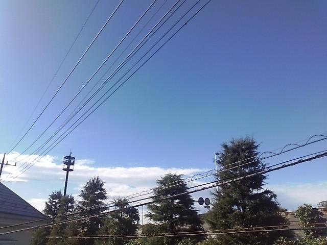 台風一過.JPG
