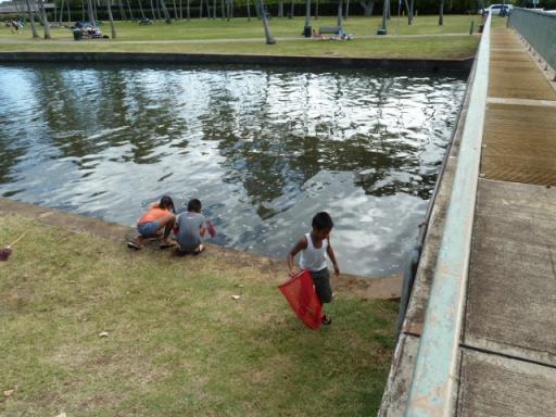 ハワイの河口で戯れる子供たち