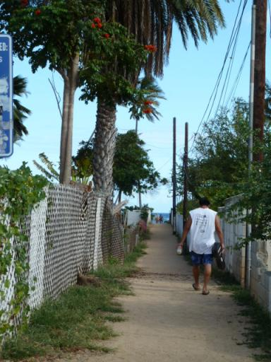 ウクレレ片手の兄ちゃんが歩く砂浜への道