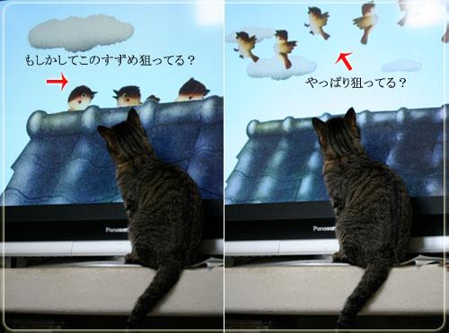 ろくとテレビ.jpg