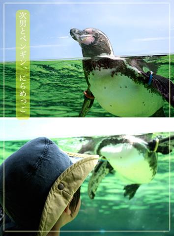 次男とペンギン.jpg