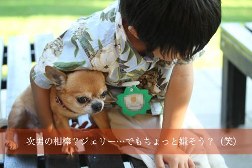 次男&ジェリー.jpg