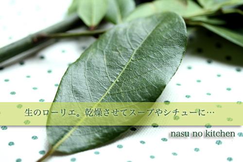 ローリエの葉.jpg