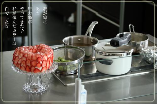 シリット社圧力鍋トップ表紙.jpg