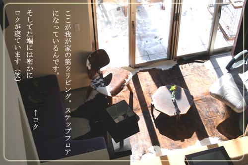 表紙/敷物.jpg