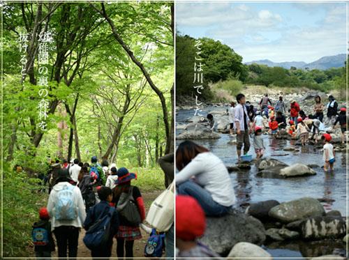 川、森林.jpg