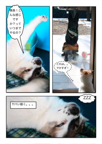 ◯犬漫画3.jpg