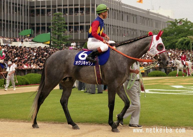 NAVER まとめ【芦毛の怪物】芦毛のG1馬一覧の軌跡