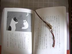 猫のなる木 中味.jpg