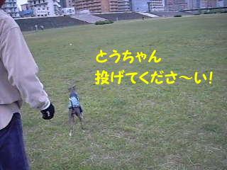 ボール遊び♪