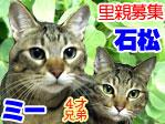 石松&ミー.jpg