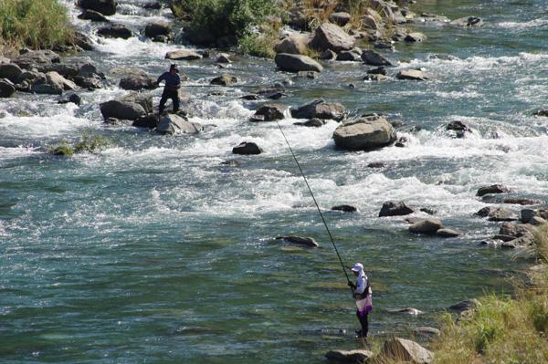 20090820鮎釣り