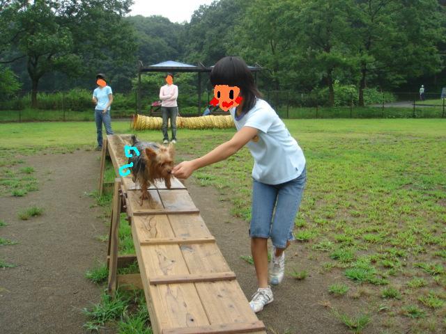 ポロ&綾 森林公園 007.jpg