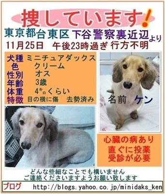 迷子犬のケンちゃん東京都