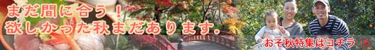 500osoaki_bn.jpg