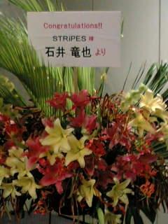 STRiPES赤プリ