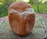 米粉パンプレーン