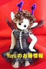 Yuruのお得情報へはこちらから