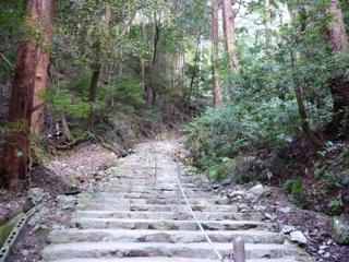 醍醐寺_上醍醐登山道(2)_2010_3_17