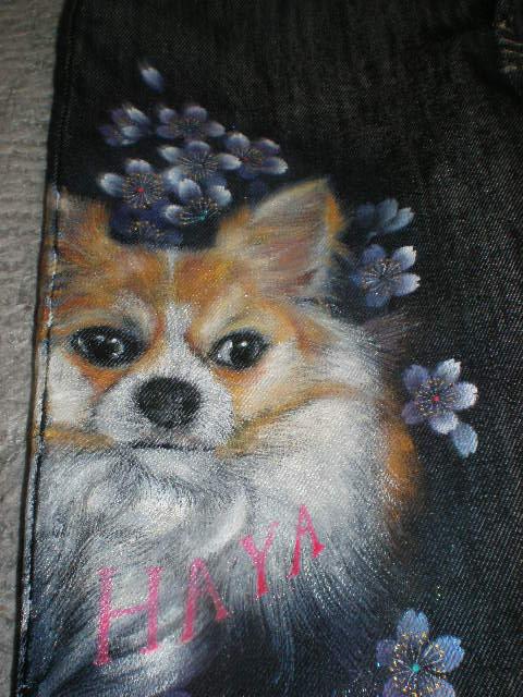ジーンズ愛犬2