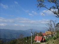霧の高原コテージ