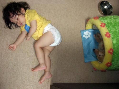 たくさん遊ぶと眠たくなるよね(^^;