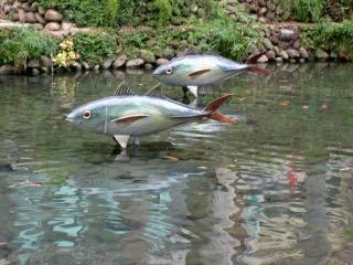 親水公園#3