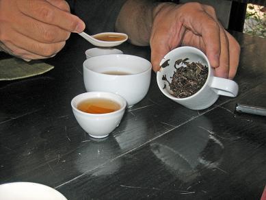 東方美人茶25年