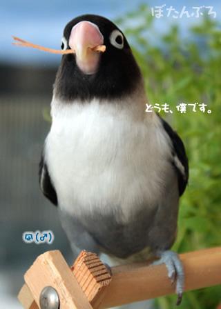 20111219_01.jpg