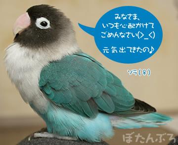 20080118_02.jpg