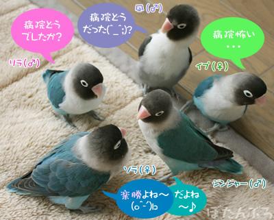20080118_04.jpg