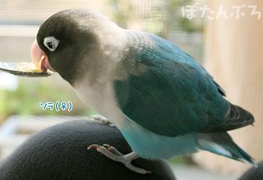 20071118_03.jpg