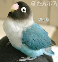 20070507_04.jpg