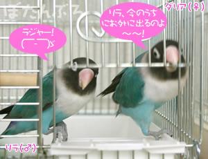 20060613_01.jpg