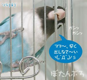 20060613_02.jpg