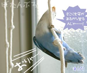 20060630_01.jpg