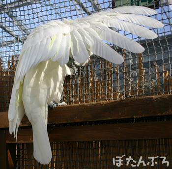 20061130_08.jpg