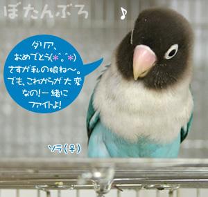 20070422_01.jpg