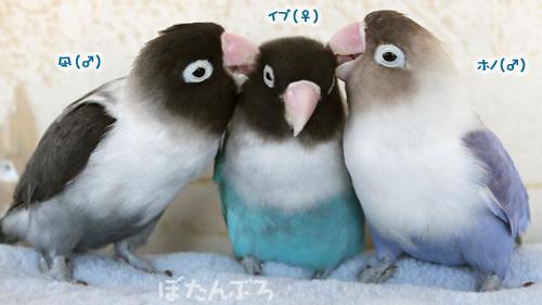 20120108_01.jpg
