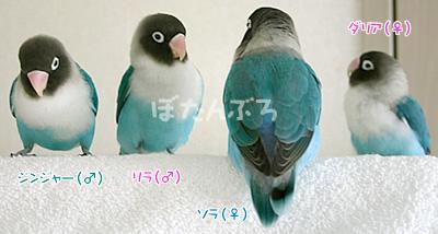 20061214_03.jpg