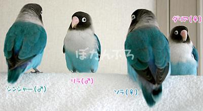 20061214_04.jpg