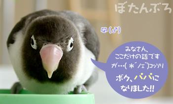 20070421_01.jpg