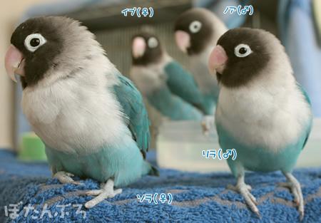 20110418_01.jpg